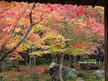 京都はるみ2.JPG