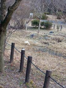 平和公園2013.1c.jpg