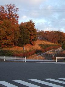 平和公園紅葉2.jpg