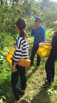 水野農園2015.2.JPG