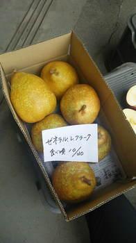 水野農園2015.6.JPG