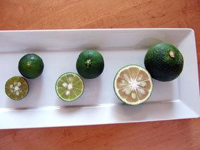 香酸柑橘比較.jpg