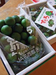 すだち2012a.jpg