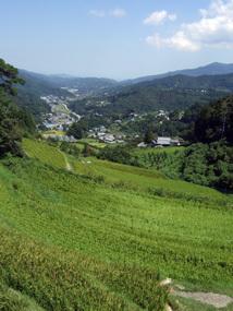 徳島視察14.jpg